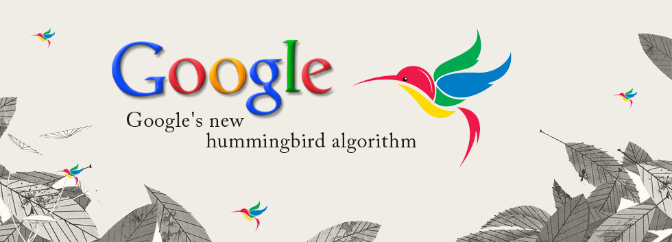 Decoding the 'Hummingbird' Code – What Google's New Algorithm Means to You